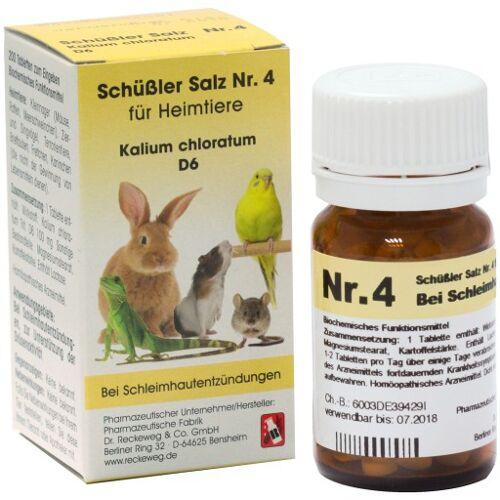 SCHÜSSLER SALZ Nr.4 Kalium chlor.D 6 f.Heimtiere 200 St