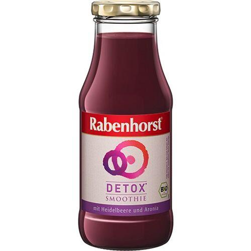 RABENHORST Detox Smoothie Bio Saft 240 ml