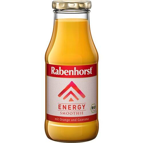 RABENHORST Energy Smoothie Bio Saft 240 ml