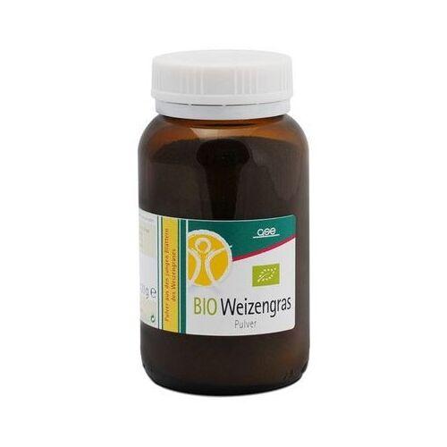 GSE Bio Weizengras Pulver