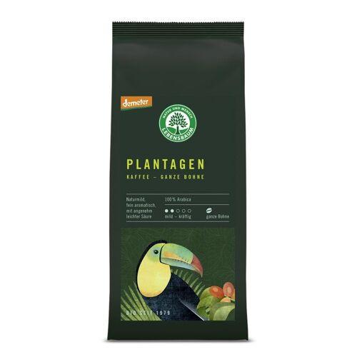 Lebensbaum Bio Plantagen Kaffee Bohne demeter