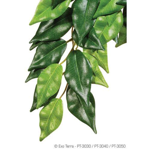 Exo Terra Terrarien-Pflanze Fikus, Größe: L / groß