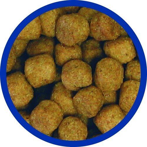 Allco (2,63 EUR/kg) Allco Forelle Lachs Futter 6 mm 25 kg