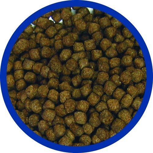 Allco (2,25 EUR/kg) Allco Forelle Mast Futter 3mm 25 kg