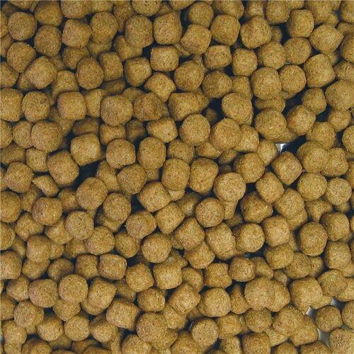 Allco (1,88 EUR/kg) Allco Karpfen Mast 6,0 mm 25 kg
