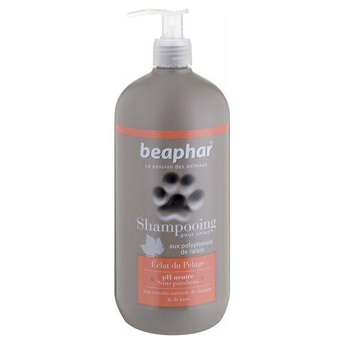 Beaphar (20,25 EUR/l) Beaphar Shampoo Fellglanz 750 ml