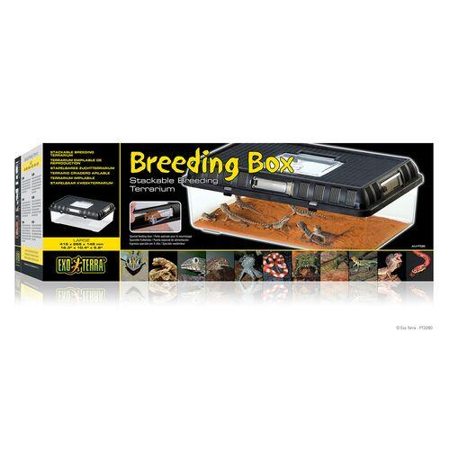 Exo Terra Breeding Box - Brutbox, groß / 41,5 x 26,5 x 14,8 cm