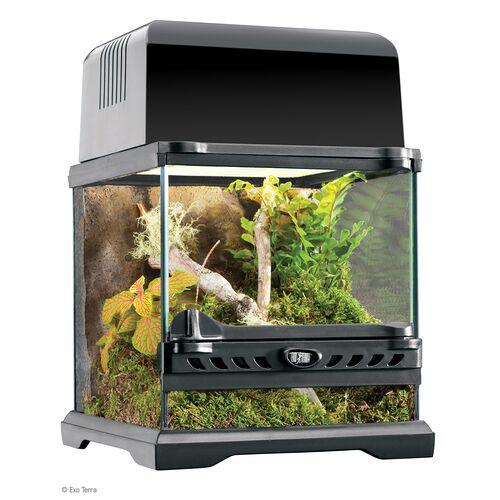 Exo Terra Natural Terrarium Nano - Glas Terrarium, Maße: 20 x 20 x 20 cm