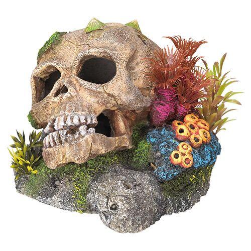 Nobby Aquariendekoration Totenkopf mit Pflanzen 13,5 x 13,5 x 10,5 cm