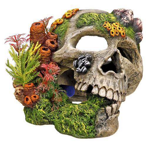 Nobby Aquariendekoration Totenkopf mit Pflanzen 19,5 x 16 x 14 cm