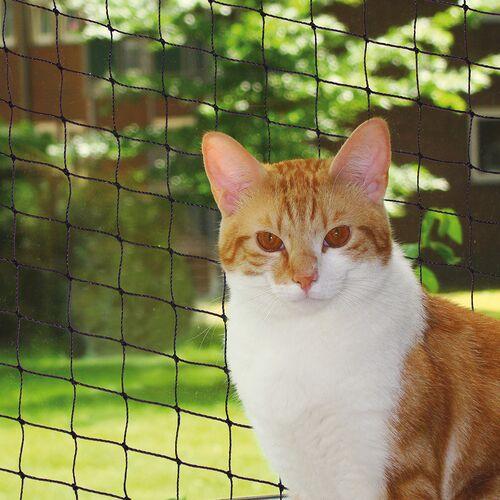 Nobby Katzenschutznetz schwarz, Größe: S