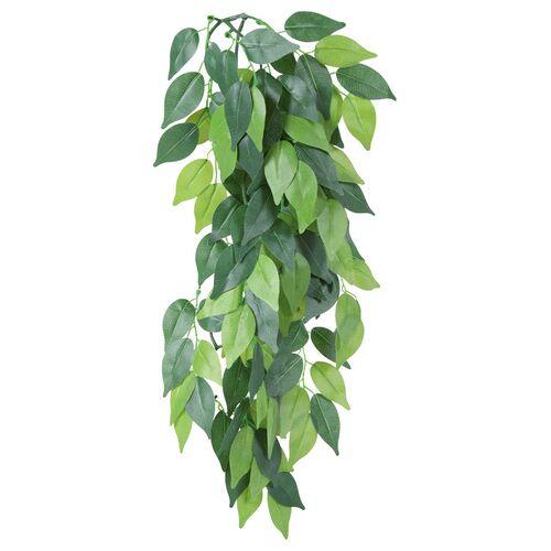 Trixie Seiden-Hängepflanze, Ficus, Maße: ø 20 x 50 cm