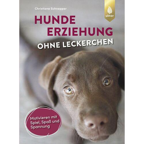 Ulmer Hundeerziehung ohne Leckerchen