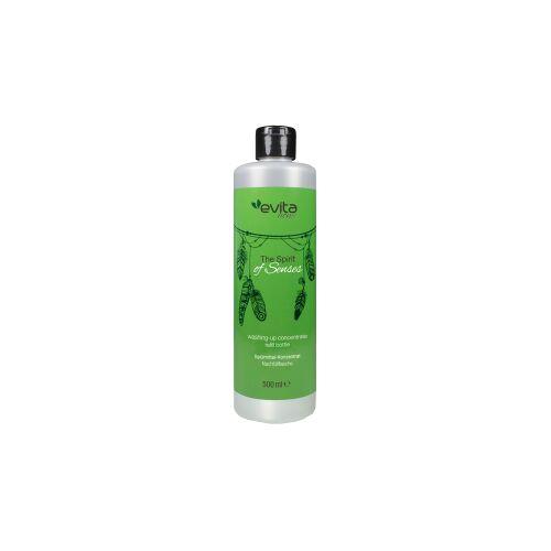 HEINRICH HAGNER GmbH & Co evita Home The Spirit of Senses Spülmittel Konzentrat, Haushaltshelfer als Wohnaccessoires, 0,5 Liter - Flasche, Zitronenminze