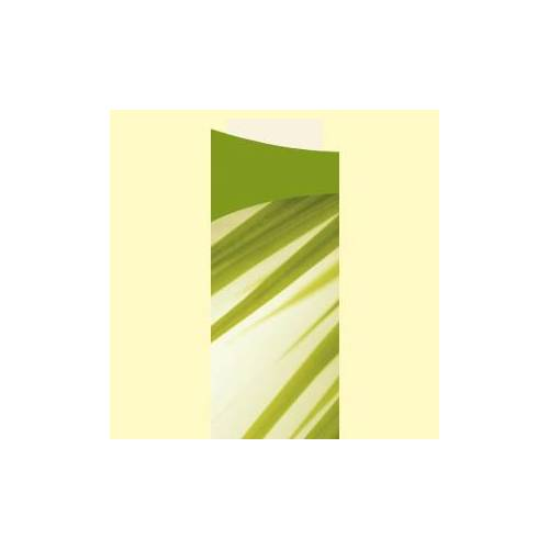 Duni GmbH & Co. KG DUNI Sacchetto Motiv Serviettentaschen, Bestecktaschen inklusive Servietten, 1 Karton = 5 x 100 Stück = 500 Stück, Muster: Bamboo
