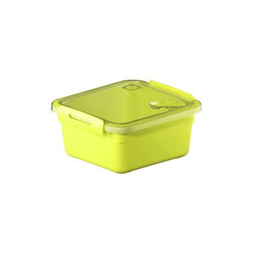 Rotho Kunststoff AG Rotho MEMORY Mikrowellen-Dose, Mikrowellen-Behälter zum Aufwärmen, Transportieren oder Frischhalten, Füllmenge: 1000 ml, 160 x 150 x 77 mm, LIME grün