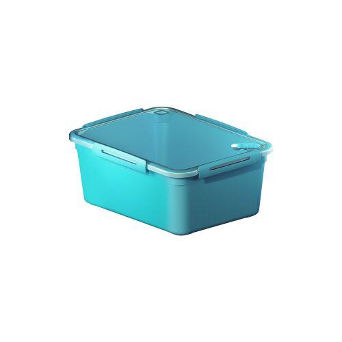 Rotho Kunststoff AG Rotho MEMORY Mikrowellen-Dose, Mikrowellen-Behälter zum Aufwärmen, Transportieren oder Frischhalten, Füllmenge: 5000 ml, 290 x 220 x 121 mm, AQUA blau