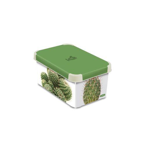 Curver Luxembourg S.a.r.l CURVER DECO´s Stockholm Aufbewahrungsbox, 5,5 Liter, Aufbewahrungskisten im Trend-Design bringen Farbe in Ihr Zuhause, Design: Succulents