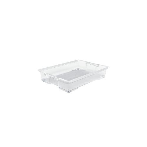 Rotho Kunststoff AG Rotho EVO EASY Unterbettbox, Aufbewahrungsbox aus Kunststoff, Fassungsvermögen: 50 Liter