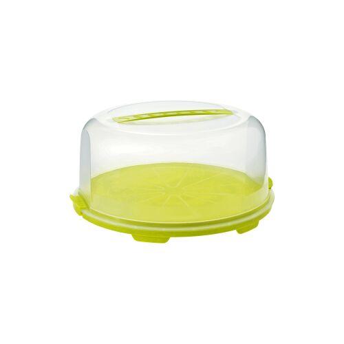 Rotho Kunststoff AG Rotho FRESH Tortenglocke - Hoch, Tortenhaube aus Kunststoff, Maße: 355 x 345 x 165 mm, Farbe: transparent / grün