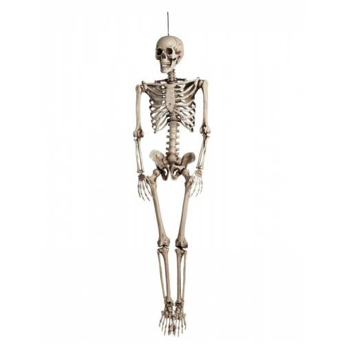 Vegaoo Halloween Skelett Dekoration zum Aufhängen