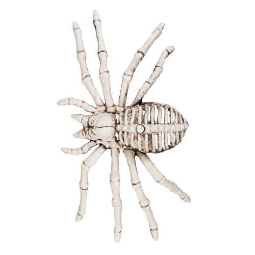 Vegaoo Halloween-Dekoration Spinnenskelett 12 x 24 cm