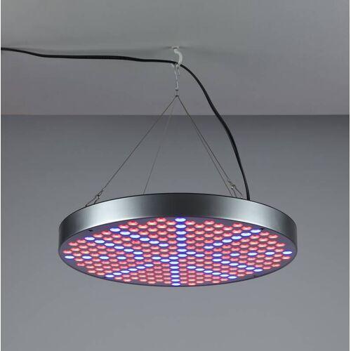 Wetelux 35W Pflanzenlicht LED Leuchte rund