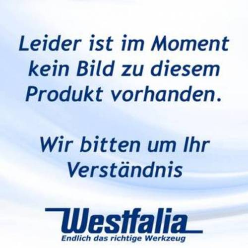 Westfalia Elektro-Power-Feile 3 in 1 260 Watt