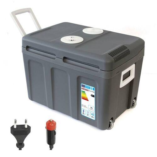 Dino Thermoelektrische Kühlbox KRAFTPAKET 40 Liter - 12 / 230 Volt