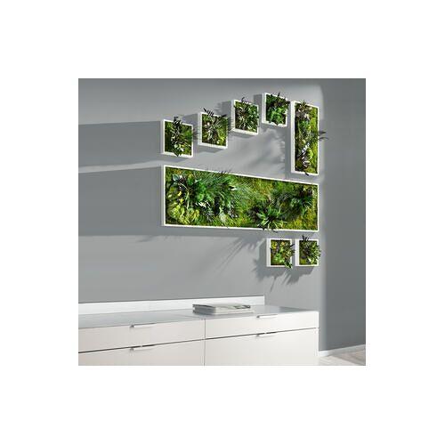 Stylegreen Pflanzenbild, Pflanzeninsel rechteckig, 27 x 57 cm