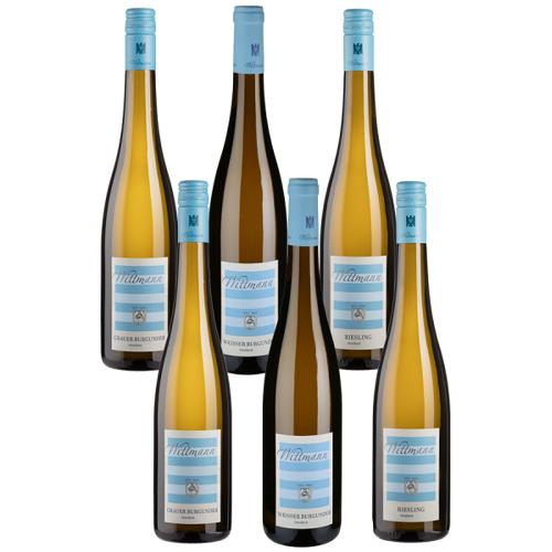 Wittmann 6er-Probierpaket Wittmann - Wittmann - Weinpakete