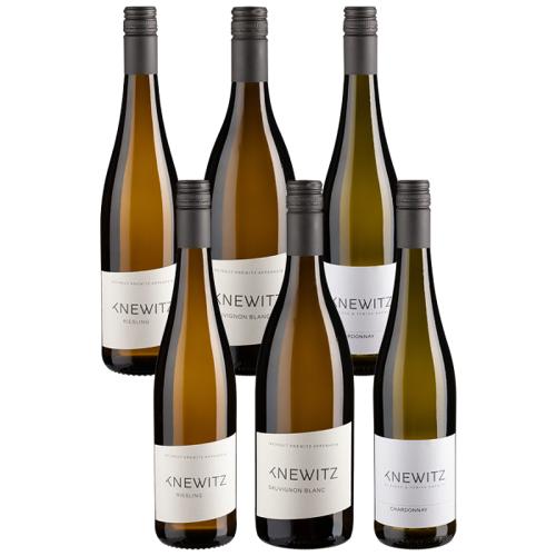 Knewitz 6er-Probierpaket Knewitz - Knewitz - Weinpakete