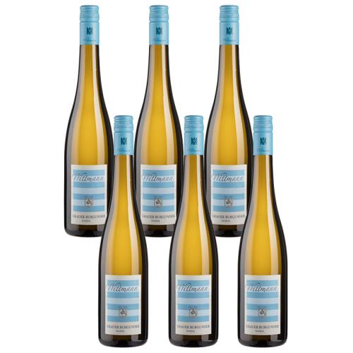 Wittmann 6er-Paket Wittmann Grauer Burgunder - Wittmann - Weinpakete