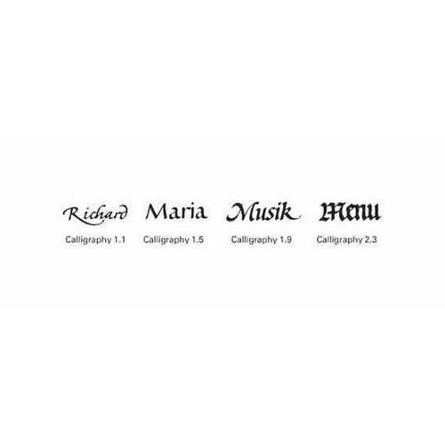 rotring Kalligraphie-Füllhalter ´ArtPen Calligraphy´, im Set, S0205870