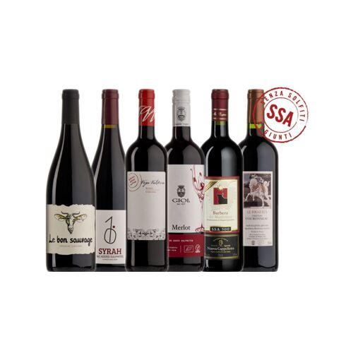 Probierkisten Bio Rotwein ungeschwefelt zum Probieren / 6 Flaschen Bio