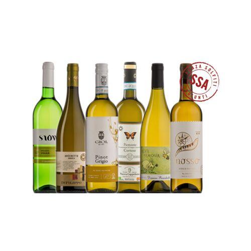 Probierkisten Weißwein ungeschwefelt Biowein Probierkiste / 6 Flaschen