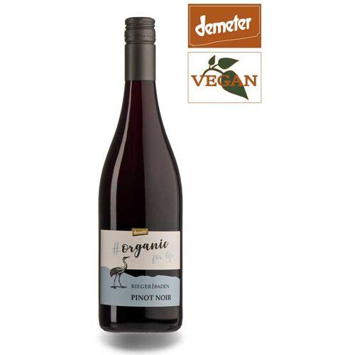 Weingut Rieger Rieger Organic for Life Pinot Noir QbA Baden 2018 Rotwein Bio