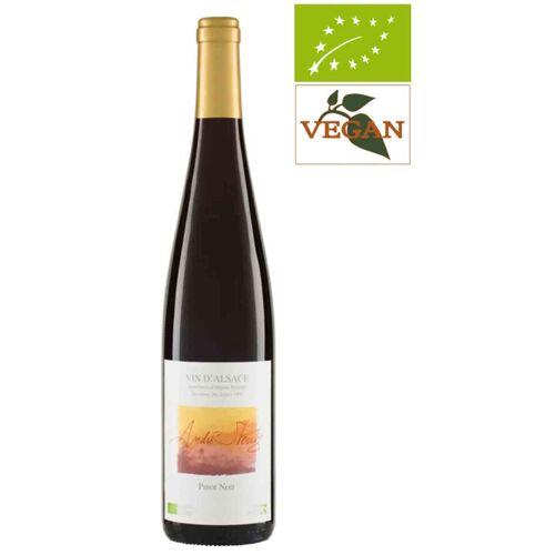 Weingut André Stentz Pinot Noir AOC Alsace 2018 Rotwein Biowein