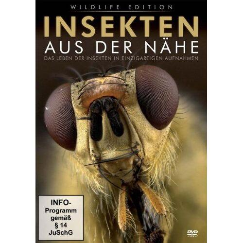 - Insekten aus der Nähe - Preis vom 13.10.2021 04:51:42 h