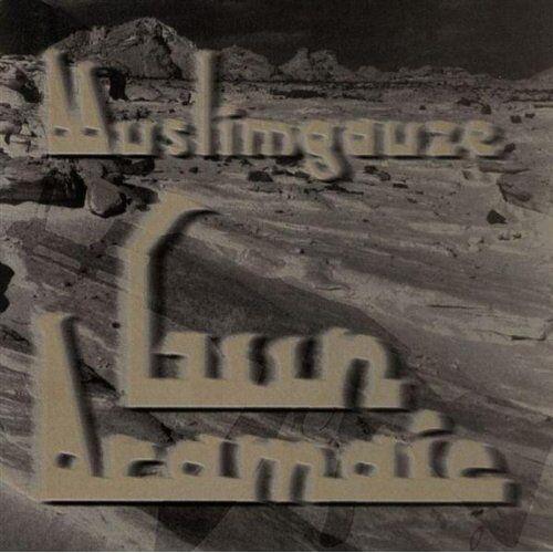 Muslimgauze - Gun Aramaic - Preis vom 18.04.2021 04:52:10 h