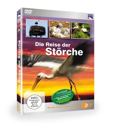 - Die Reise der Störche - Preis vom 15.06.2021 04:47:52 h