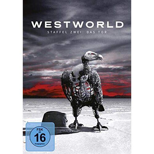 Jonny Campbell - Westworld - Staffel zwei [3 DVDs] - Preis vom 18.04.2021 04:52:10 h