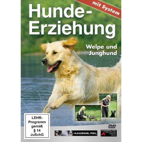 Stefanie Weinrich - Hundeerziehung mit System: Welpe und Junghund - Preis vom 13.09.2019 05:32:03 h