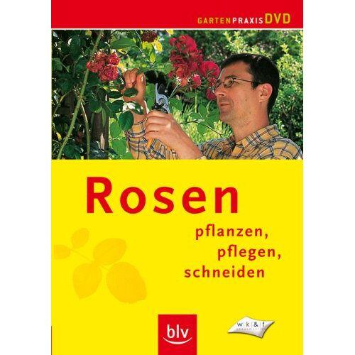 - Rosen - Pflanzen, pflegen, schneiden - Preis vom 06.05.2021 04:54:26 h