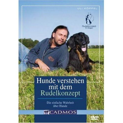 - Hunde verstehen mit dem Rudelkonzept - Preis vom 16.07.2019 06:13:35 h