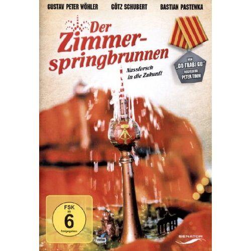 Peter Timm - Der Zimmerspringbrunnen - Preis vom 05.09.2020 04:49:05 h