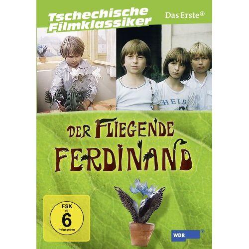 Václav Vorlícek - Der fliegende Ferdinand - Die komplette Serie (2 DVDs) - Preis vom 27.02.2021 06:04:24 h