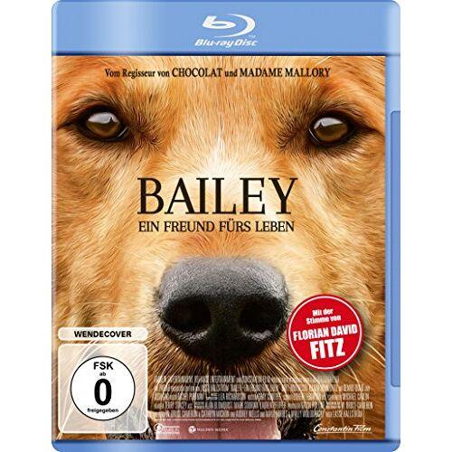 Lasse Hallström - Bailey - Ein Freund fürs Leben [Blu-ray] - Preis vom 15.05.2021 04:43:31 h