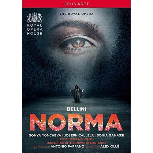 Vincenzo Bellini - Bellini: Norma (Royal Opera House) [DVD] - Preis vom 20.10.2020 04:55:35 h