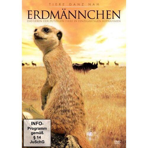 - Erdmännchen - Preis vom 13.11.2019 05:57:01 h